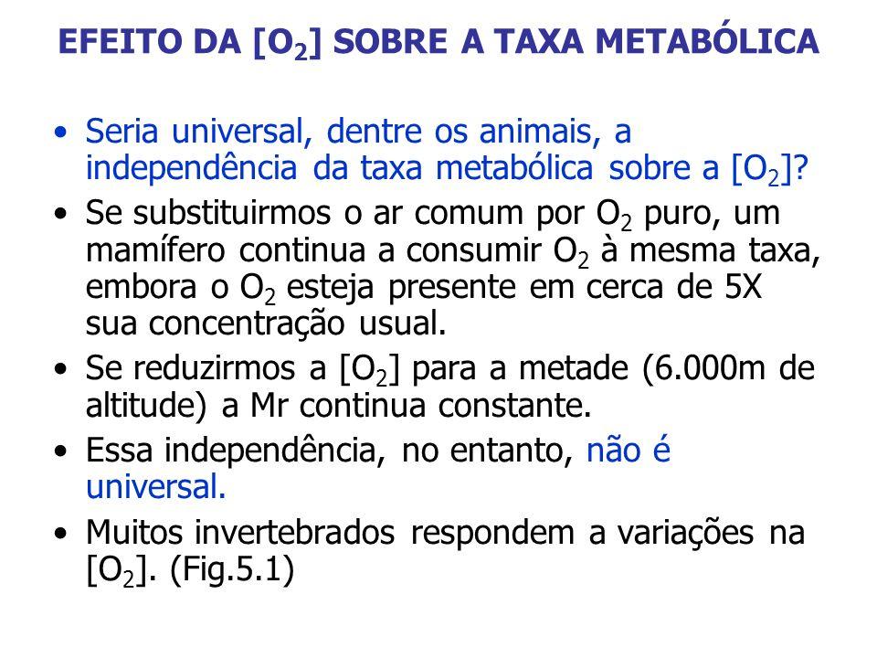 EFEITO DA [O2] SOBRE A TAXA METABÓLICA